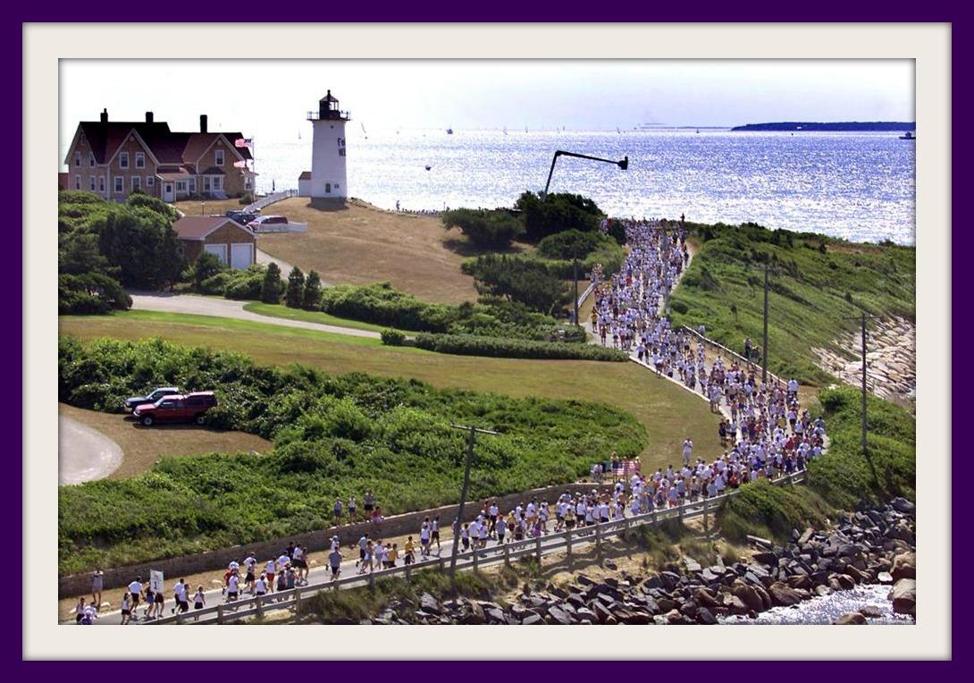 frr p26_race_view.jpg